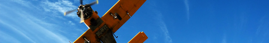 Блог о путешествиях и том как я учу иностранные языки Rotating Header Image